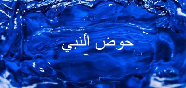 من الذي يشرب من حوض النبي