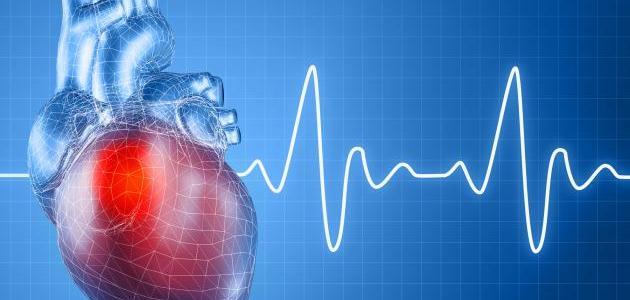 متوسط عدد ضربات القلب السليم