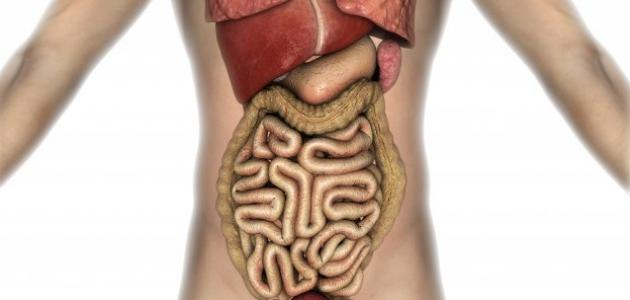 ما هو سبب مرض القولون