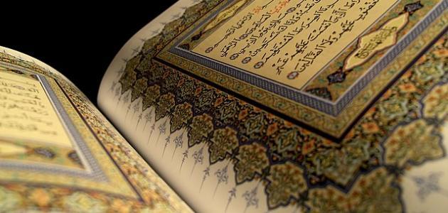 كم عدد السور التي نزلت على الرسول في مكة
