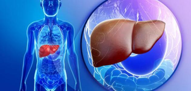 تشخيص وعلاج التهاب الكبد الوبائي سي - فيديو