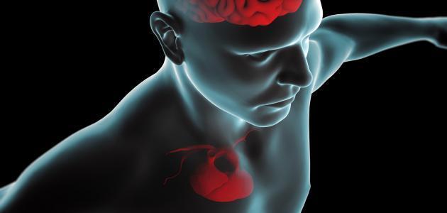 ما هي أعراض ثقب القلب