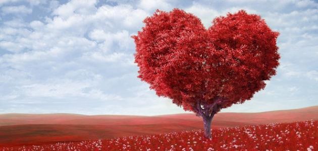 ما معنى الحب في الإسلام