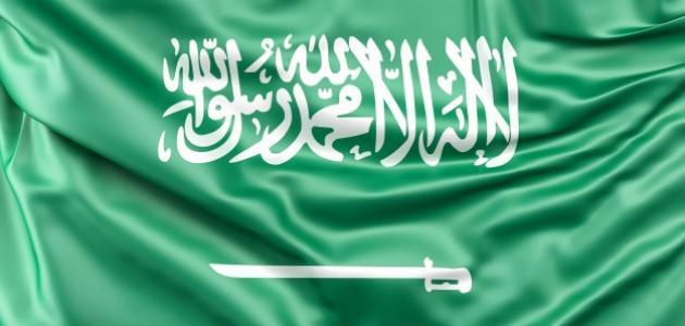 كم مدينة في المملكة العربية السعودية