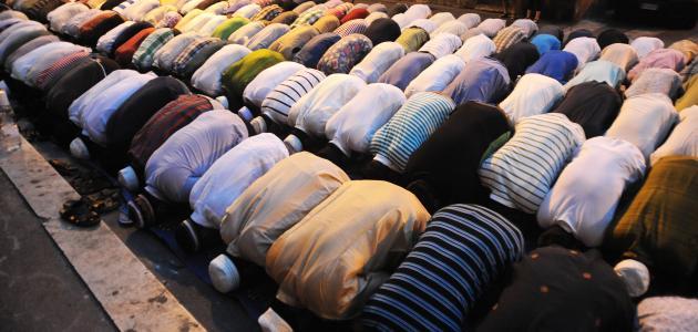 كم عدد ركعات الصلوات المفروضة