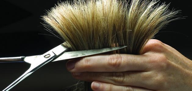 طرق علاج تساقط الشعر وتقصفه