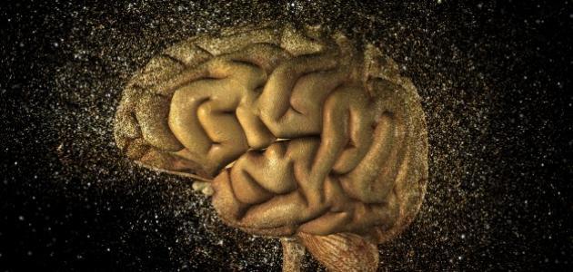الذاكرة والنسيان في علم النفس