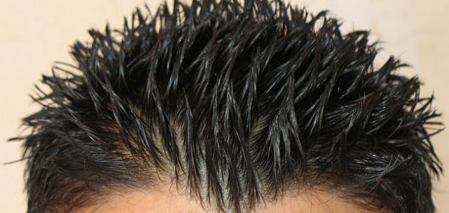 طريقة وضع جل الشعر