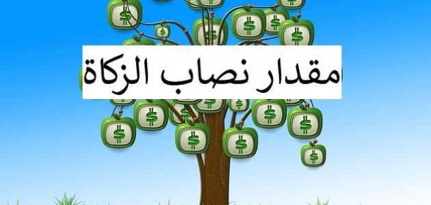 كم مقدار نصاب زكاة المال