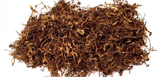مكونات التبغ وأضراره