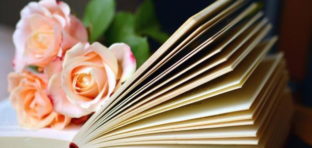 ما هي المقالة الأدبية