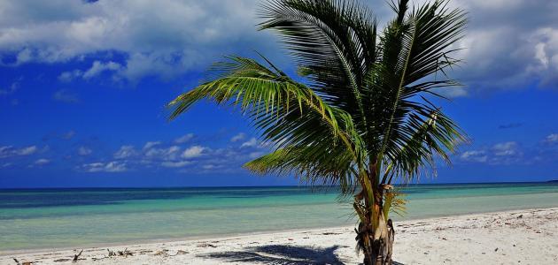 موقع جزيرة كوبا
