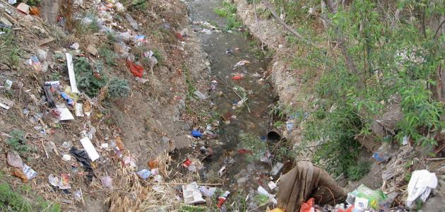 ما هي نتائج تلوث المياه