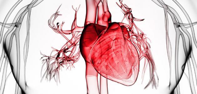 ما هو عجز القلب