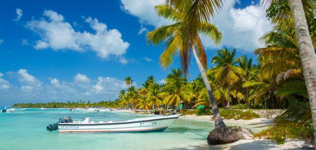 كم عدد جزر الكاريبي