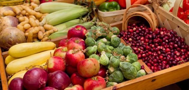 ما هي التغذية الأفضل للحفاظ على جهاز المناعة
