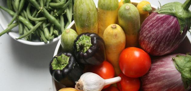 ما هي المصادر النباتية للكالسيوم