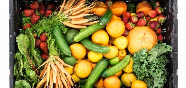 فواكه وخضروات للرجيم