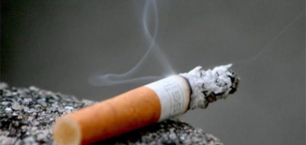 هل التدخين يخفف الشهية ويقلل الوزن