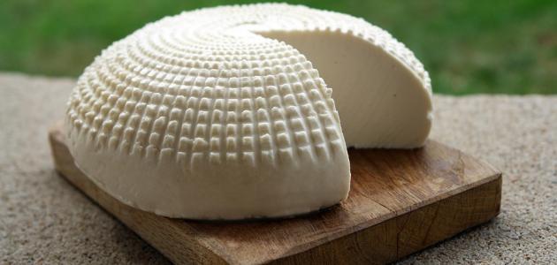 كيفية صنع الجبن البلدي المغربي