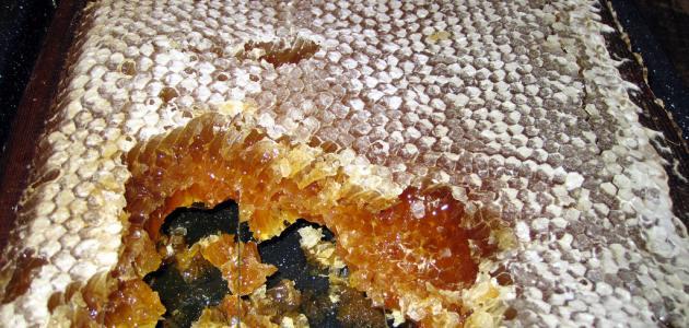 كيفية تمييز العسل الطبيعي