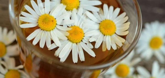 فوائد الشاي الأخضر والبابونج