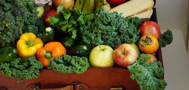 مكونات الغذاء الصحي الجيد