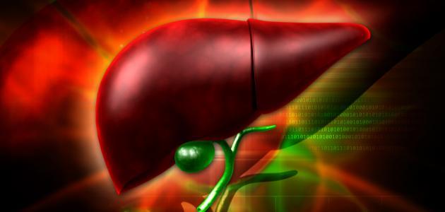 كيفية تنشيط وظائف الكبد