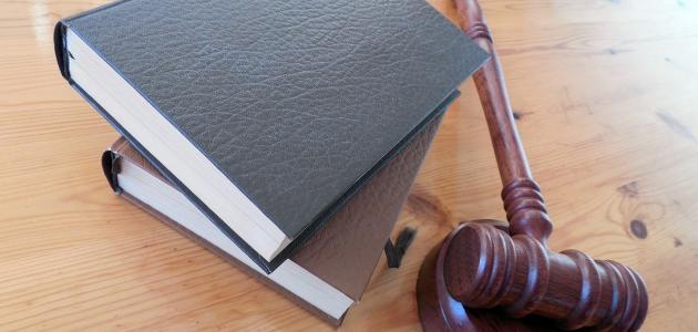 مكونات الدستور