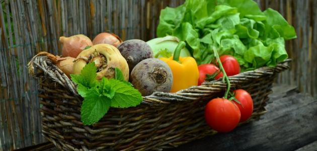 غذاء مرضى ارتفاع ضغط الدم