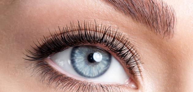 كيفية تصفية بياض العين