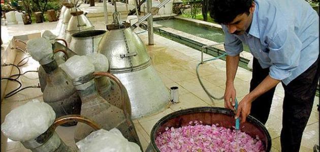 كيفية تقطير الزهور - موضوع