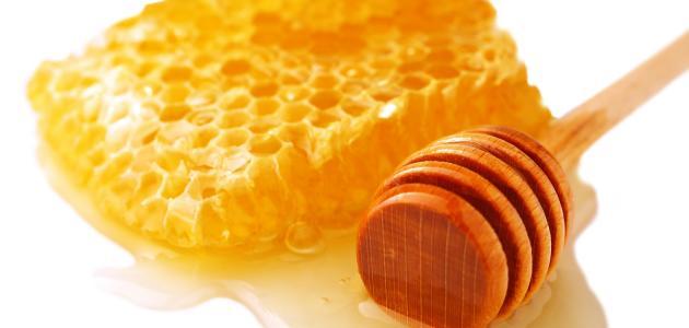 كيفية جني العسل