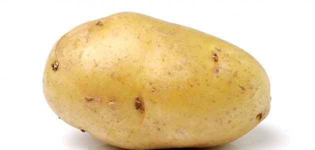 كيفية تصدير البطاطس