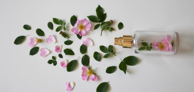 كيفية صنع عطر من الورد