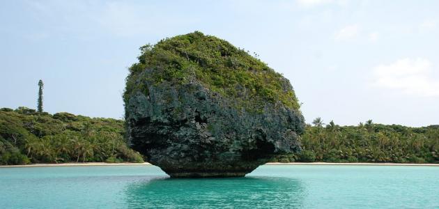 جزيرة كاليدونيا الجديدة