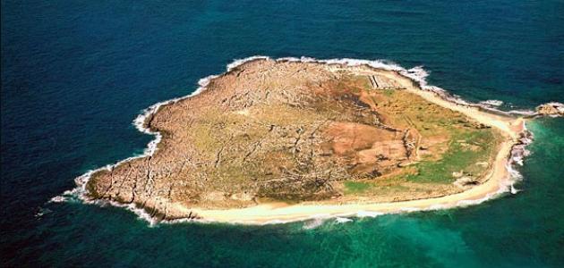 محمية جزر النخيل