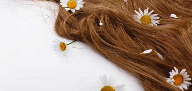 طريقة المحافظة على الشعر