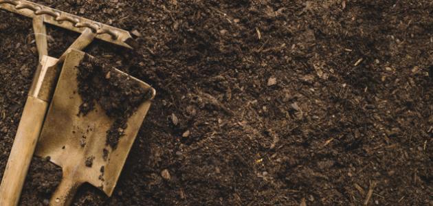 طرق تحسين التربة