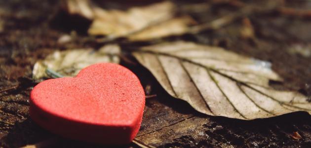 كلام عن الغيرة في الحب