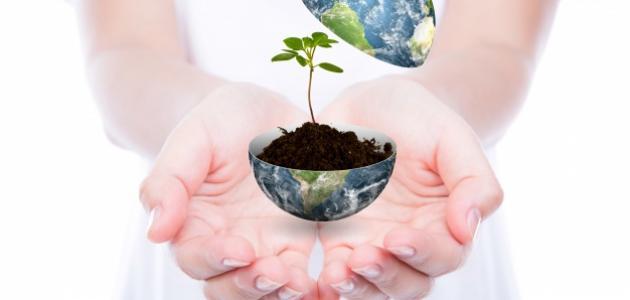 بحث حول حماية البيئة والمحيط
