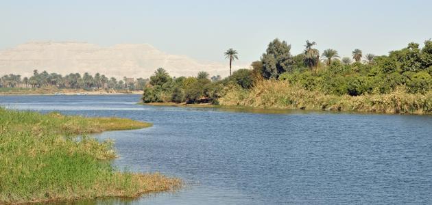معلومات عن جزر نهر النيل
