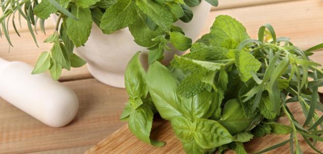 كيفية علاج رائحة الفم الكريهة بالأعشاب