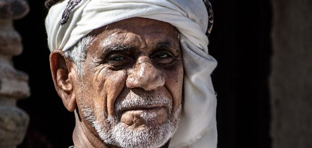 من أين جاء العرب