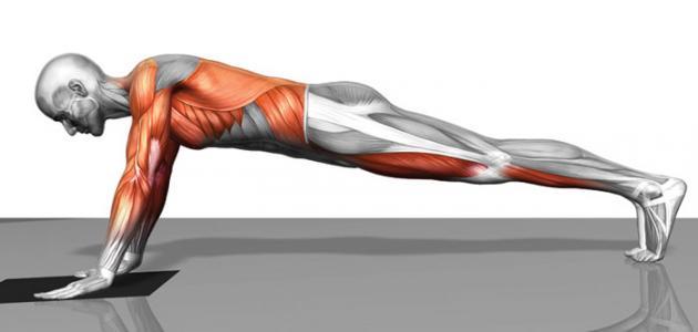 كيف تشد عضلات البطن في أسبوع موضوع