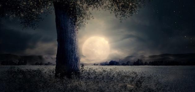 كلام عن ضوء القمر