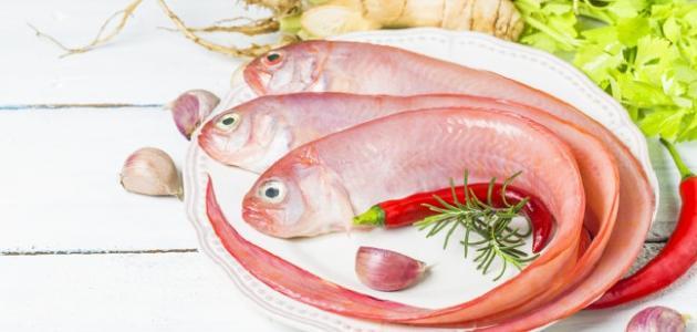 طريقة حفظ السمك