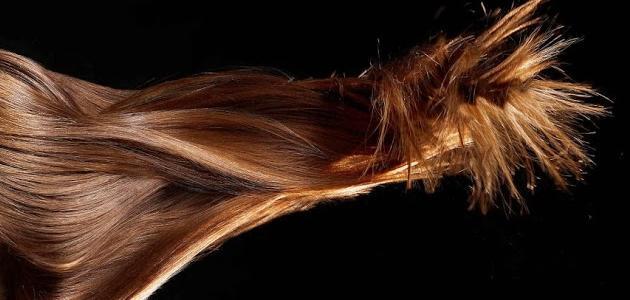 ما هي طريقة تكثيف الشعر