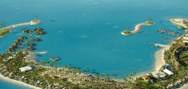 مشروع جزيرة بنانا