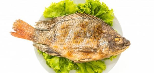 طريقة قلي سمك الزبيدي